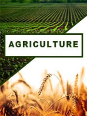 Global Hibiscus Cannabinus Seed Oil Sales Market Report 2021