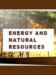 Global Power Capacitors Market Research Report 2021-2025